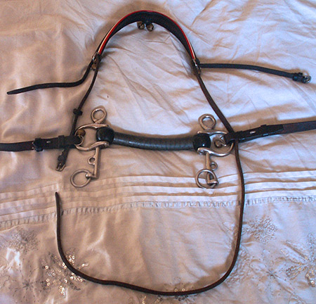 Fourth step in creating a human pony bridle from a horse bridle. Thread the cheekpieces through the clips on both sides of the bit.