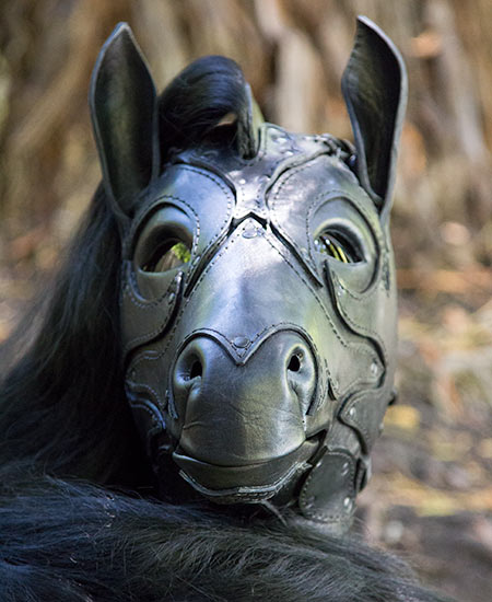 Front view of the mask to see the spacing of the eyes and size of the ears
