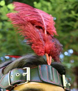 Me wearing the csara bridle with ostrich feather plume