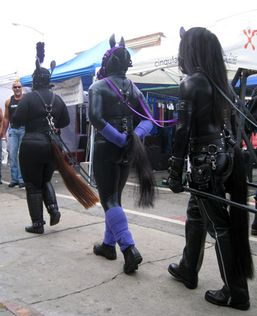 Pony play team carting in action at Folsom Street Fair 2012. These three human ponies are pulling Mistress Liliane Hunt.