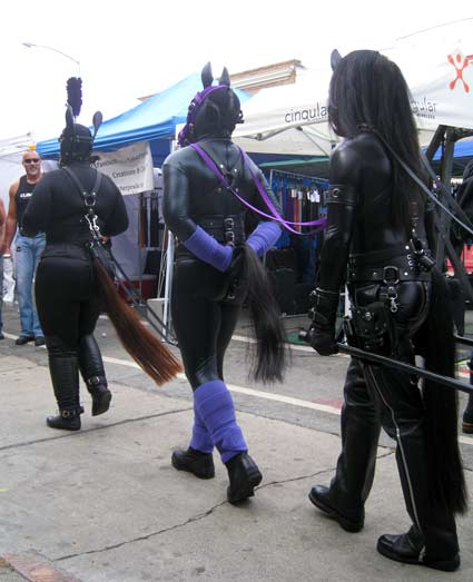 A three pony cart team at Folsom Street Fair 2012