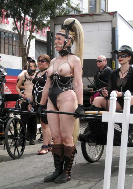 Beauty (subMissAnn), of the LA ponies and critters club, pulling at cart at Folsom 2012.
