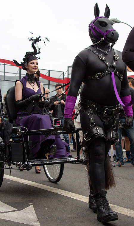 House of Hunt pony Hexx at Folsom 2014