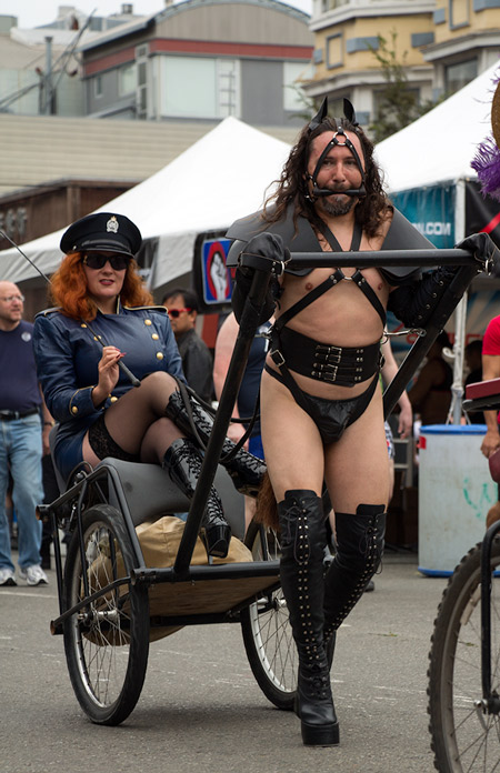 Sparky pony pulling Athena during the cavalcade at Folsom 2014