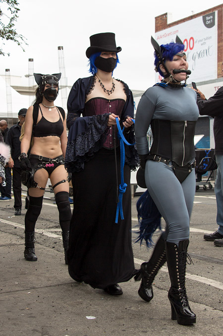Verglas and Dash at Folsom 2014