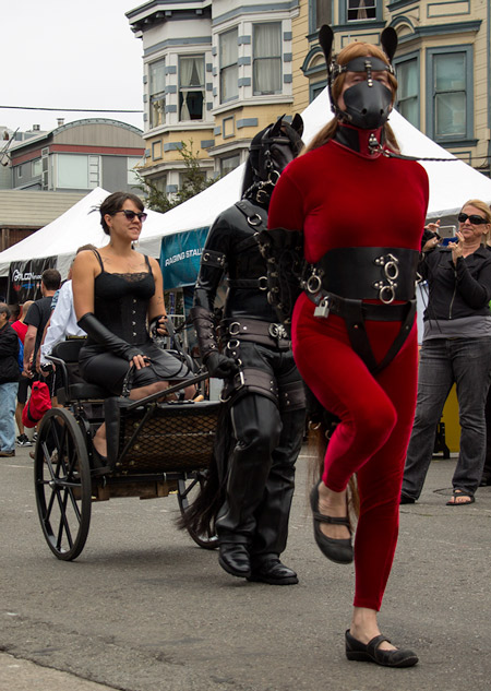 Windy pony during the cavalcade at Folsom 2014