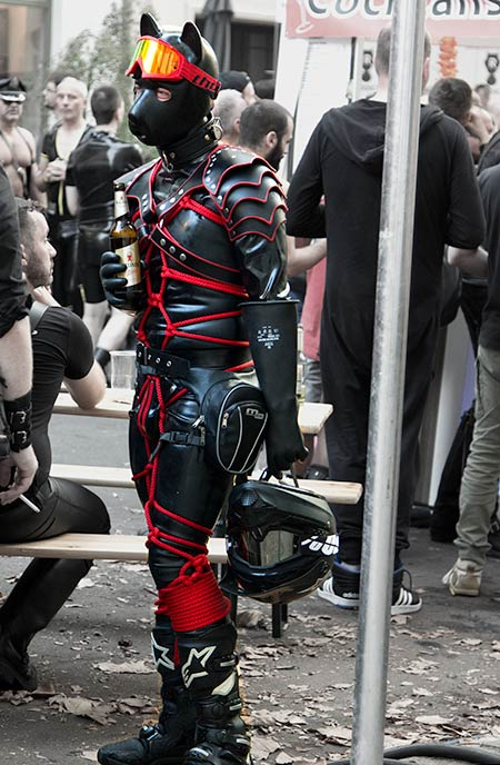 Awesome red puppy at Folsom Europe 2016