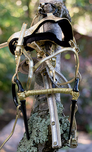 A gold colored show bridle. This model bridle was featured in a Ken Marcus ponygirl photo shoot used for cover of Equus Eroticus magazine.