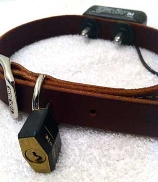A standard leather dog collar made lockable by simply adding a padlock through the first hole after the retainer. Livestock hobbles can be made lockable in a similar manner albeit with a larger padlock. The collar pictured also has a shocking unit added.