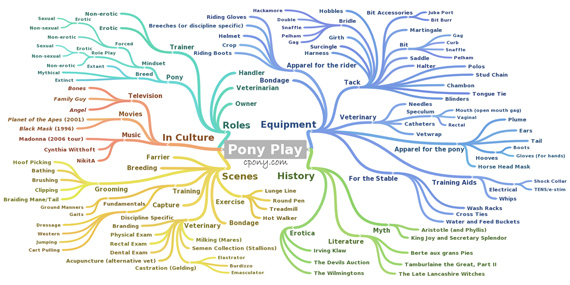A mind map diagram of pony play