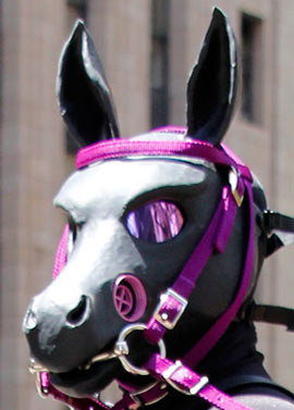 A pony from the House of Hunt at the 2013 SF Pride Parade wearing a wild gas masks horse head